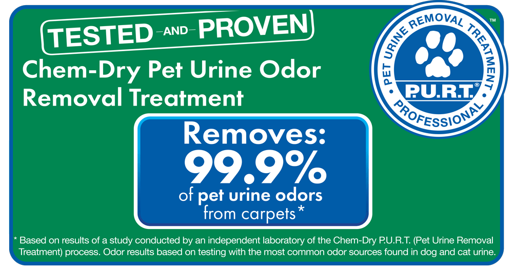 pet urine and odor removal dallas